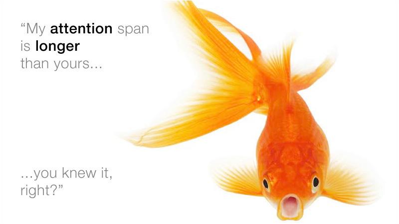 I tuoi utenti sono pesci rossi?